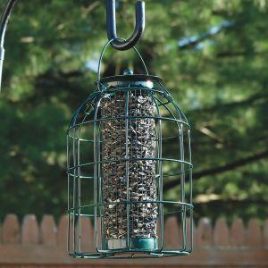 Squirrel-Proof Wire Bird Feeder