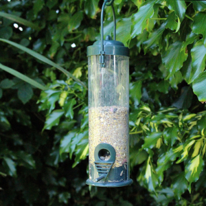Standard Bird Seed Feeder